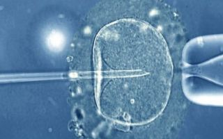What not to say to someone going through IVF